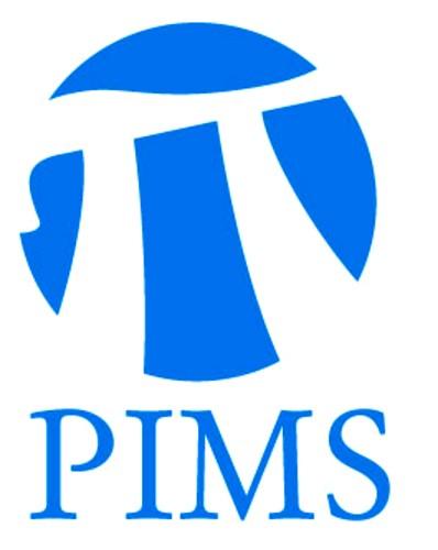 PIMS-анализ
